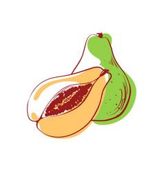 Ripe avocado isolated icon vector