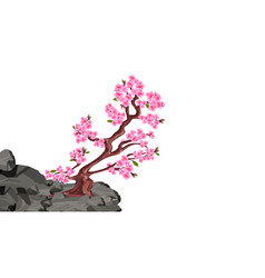 Sakura blooms cherry tree on a stone cliff in the vector