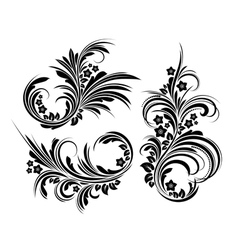 Set of elegant floral elements vector