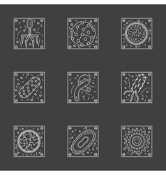 White line viruses and bacteria icons set vector