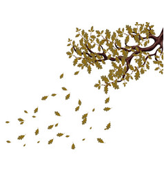 in autumn a yellowed branch of a large oak tree vector image