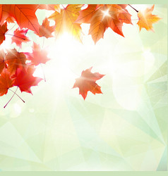 Abstract autumn with maple leaves vector