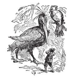 Giant birds vintage vector