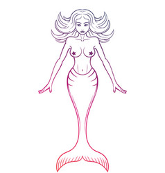 mermaid outline on white vector image