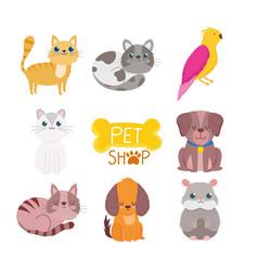 pet shop cute animals cat dog bird rodent vector image