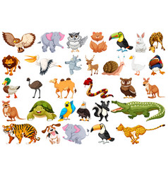 set animal character vector image