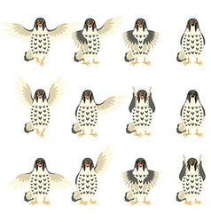 Set of falcon flat icons vector