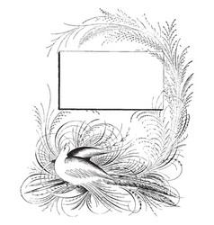 Bird is in the bottom of design vintage engraving vector