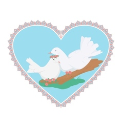 Couple sweety white doves vector