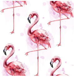 flamingo pattern watercolor exotic bird vector image