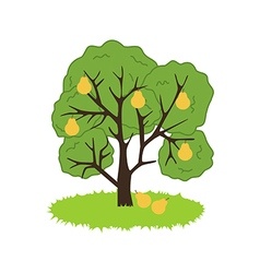 Pear Tre Icon vector