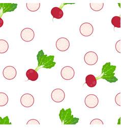radish seamless pattern isolated on white vector image
