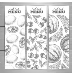 Set of vegetarian fresh fruit banners Fruit sketch vector image