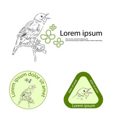 templates for a logo with a bird drawn by hand vector image