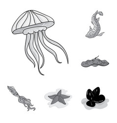 A variety of marine animals monochrome icons in vector