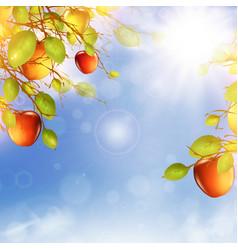 Apple tree over blue sky vector