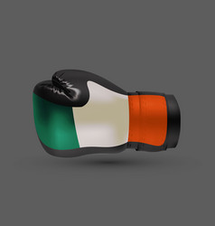 Boxing gloves with prints of irish and russian vector