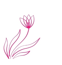 Drawing Flower On Blackboard vector
