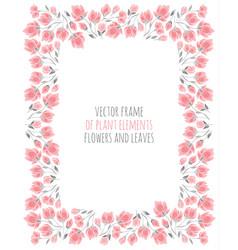 Elegant frame of delicate pink sakura blossoms vector