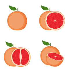 grapefruit whole fruit half slice vector image