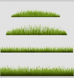 grass frames in transparent background vector image