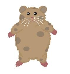 Hamster cute vector