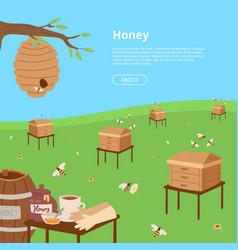Honey farming poster cartoon honeycomb bee pod vector