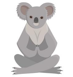 koala doing yoga vector image