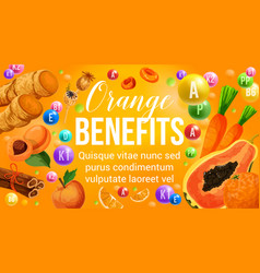 Orange diet fruits and healthy vitamin vegetables vector