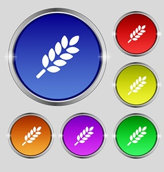 Wheat Ears Icon sign Round symbol on bright vector