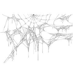 black large torn spider web on white background vector image