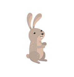 cute hare woodland cartoon animal vector image