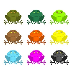frog color Set Colored toads Woody Orange frog vector image
