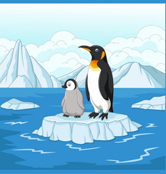 Cartoon mother and baby penguin on ice floe vector