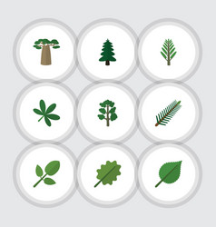 Flat icon natural set of linden alder baobab and vector