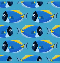 Powder blue tang fish seamless pattern acanthurus vector