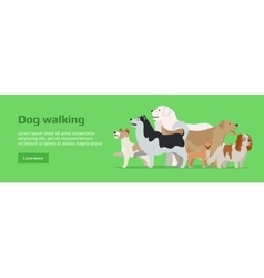 Professional dog walking service banner vector