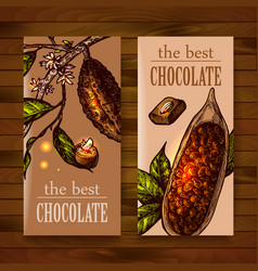 sketch chocolate vector image