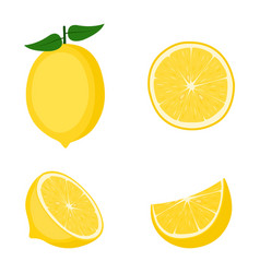 Lemon whole fruit half and slices vector
