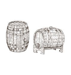 oak containers for alcohol storage graphic art vector image