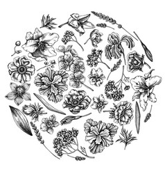 round floral design with black and white anemone vector image