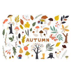 Set colorful autumn leaves in cartoon style vector