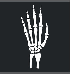 Skeleton hand with bones vector