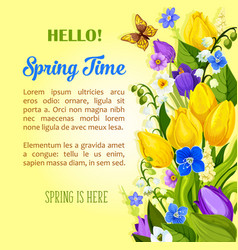 spring flowers blooming design greetings vector image
