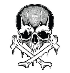 cartoon decorative human skull vector image