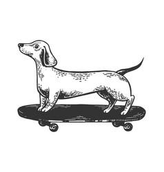 Dog on skateboard engraving vector