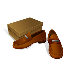 Elegant new brown male shoes with shoe box vector