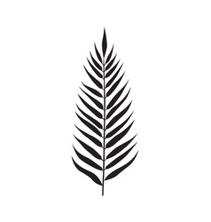 Palm leaf element vector