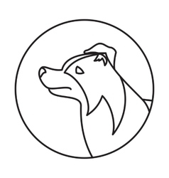 Line collie border head dog in round vector image vector image