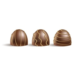 set of chocolate candies on the white vector image